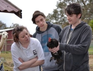 VCAL Students learn how to hold a chicken